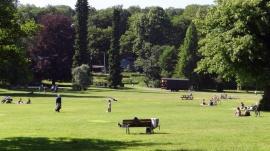 Njut av djur och natur i Slottskogen