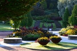 Upplev världens växter i Botaniska